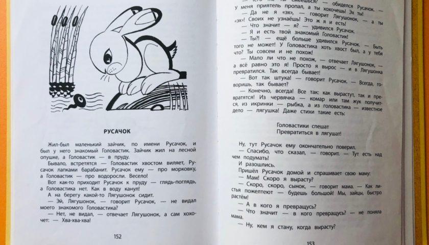 Литературный театр теней «Русачок»