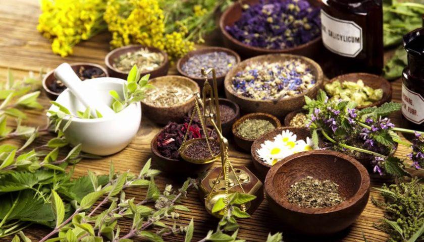 Онлайн беседа «Народная медицина для вас»