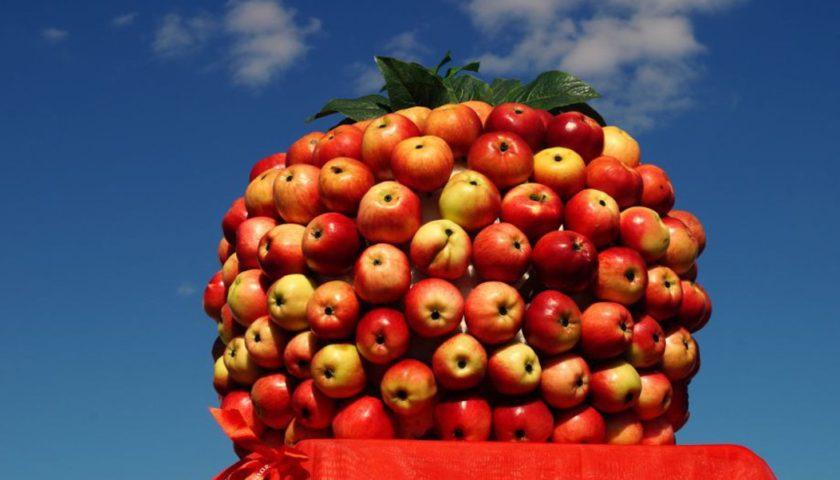Конкурсная программа «Спас яблочко припас»